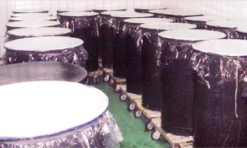 天然酵母採取