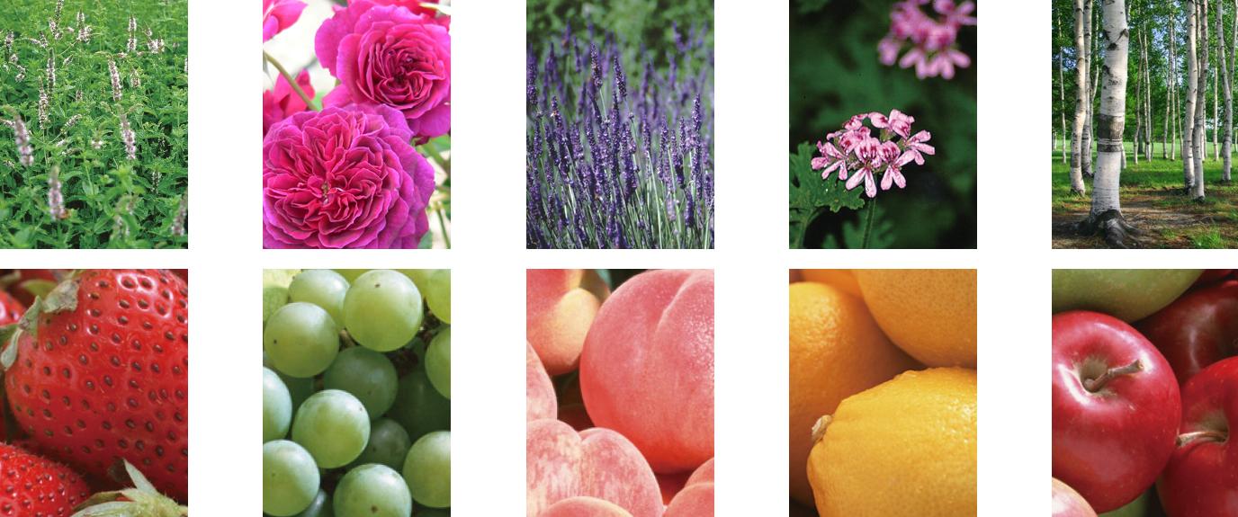 国産フルーツの香り&ハーブ
