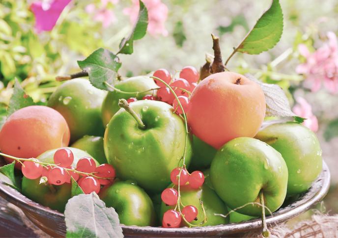 フルーツ漬けになる時間