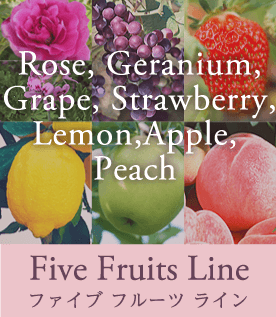 Five Fruits Line ファイブ フルーツ ライン