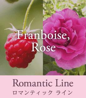 Romantic Line ロマンティック ライン